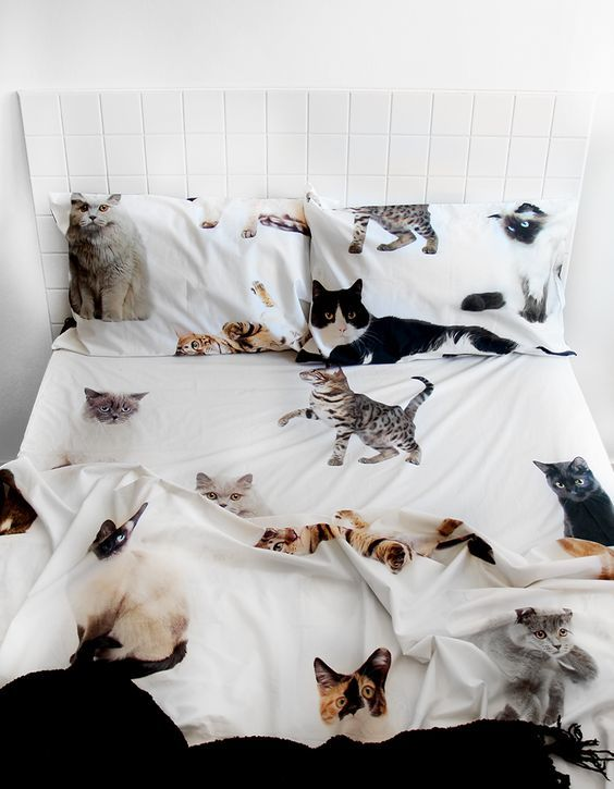 30+ Cute Cat Themed Bedroom Decorating Ideas